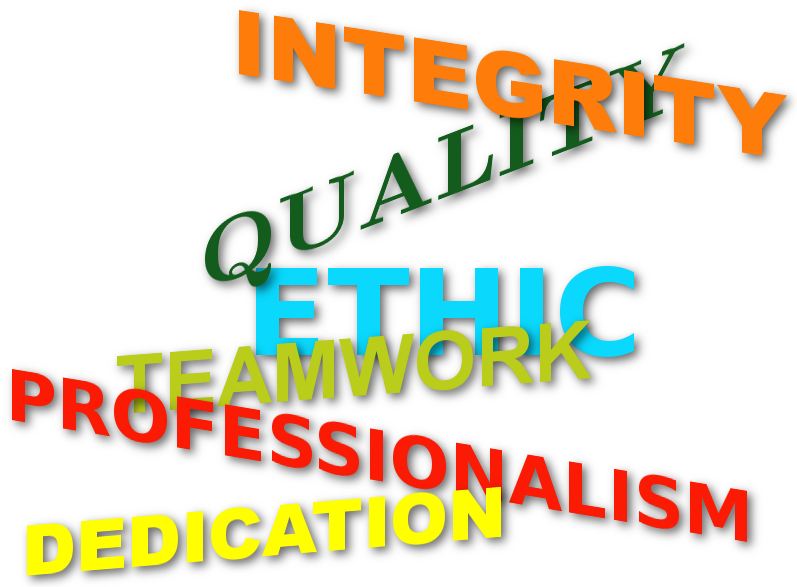 Professionalism, Dedication, Quality,<br> Integrity & Teamwork